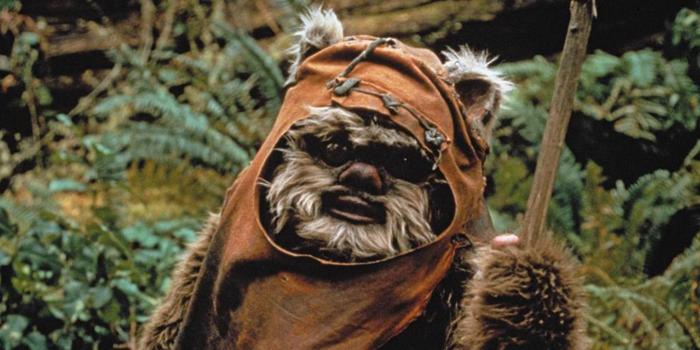 Star Wars: A Monkey Goes Viral After Being Compared to an Ewok