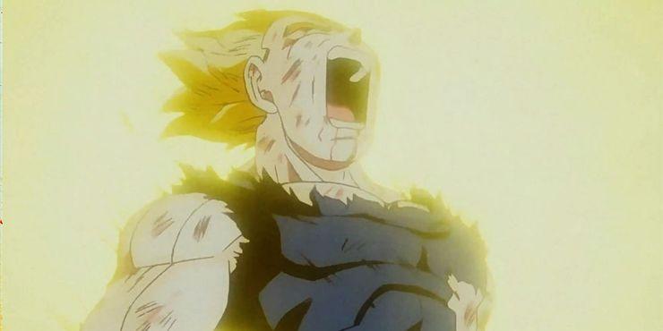 Dragon Ball Z Vegeta Sacrifice.jpg?q=50&fit=crop&w=740&h=370&dpr=1 - DARLING in the FRANXX Merch