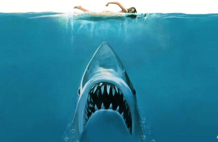jaws-shark-steven-spielberg.jpg?q=50&fit=crop&w=738&h=483&dpr=1.5