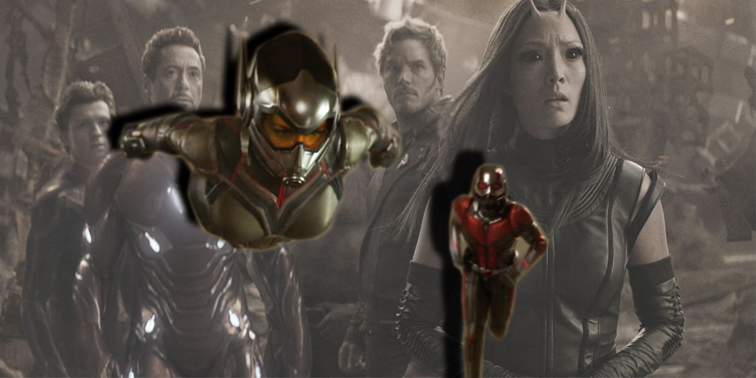 Ant-Man 2 Is 'Breath of Fresh Air' After Avengers ...