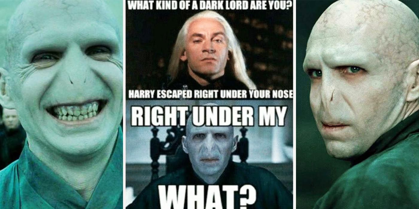 Harry Potter 25 Memes That Show That Voldemort Makes No Sense
