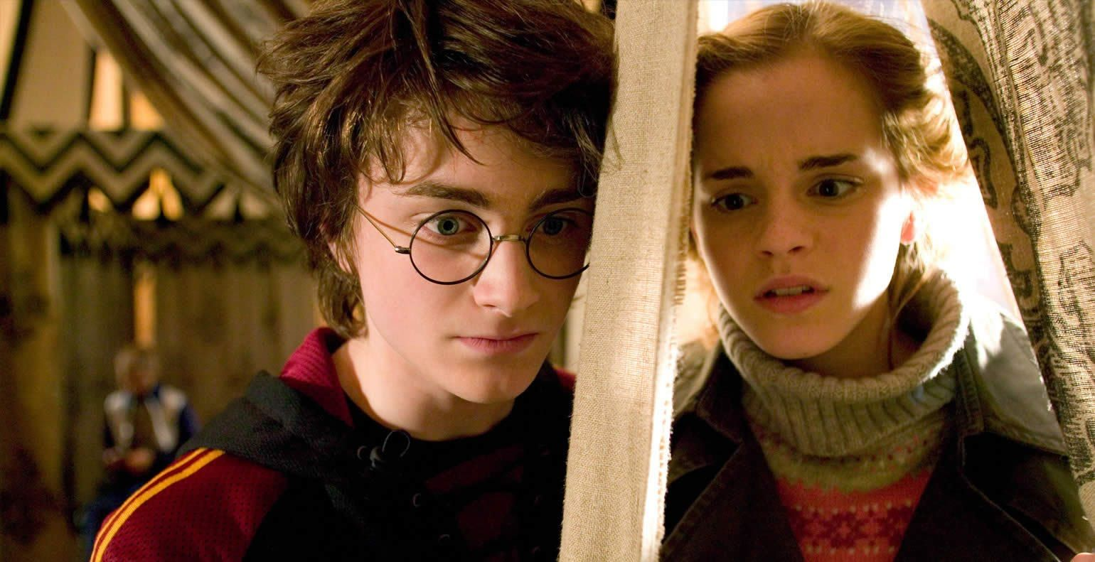 Harry Potter: 20 Crazy Facts About Harry and Hermione's