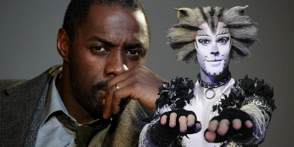 Idris Elba Joins Taylor Swift's Cats Movie Musical Adaptation