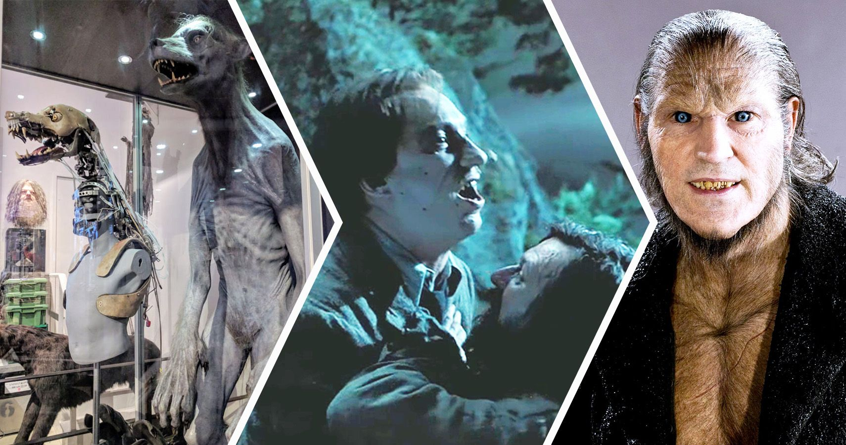 Harry Potter: 20 Strangest Details About Remus Lupin's Anatomy