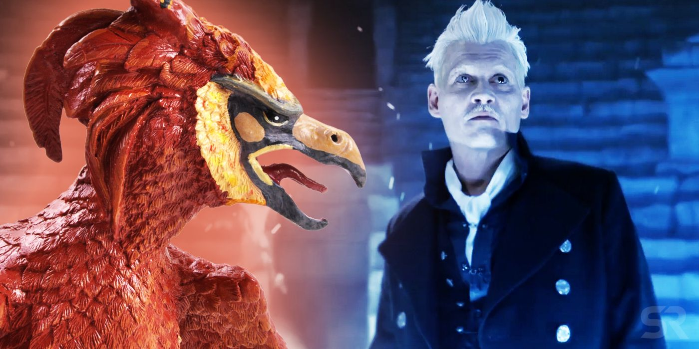Fantastic Beasts Theory: How Grindelwald Lied About Credence's Identity