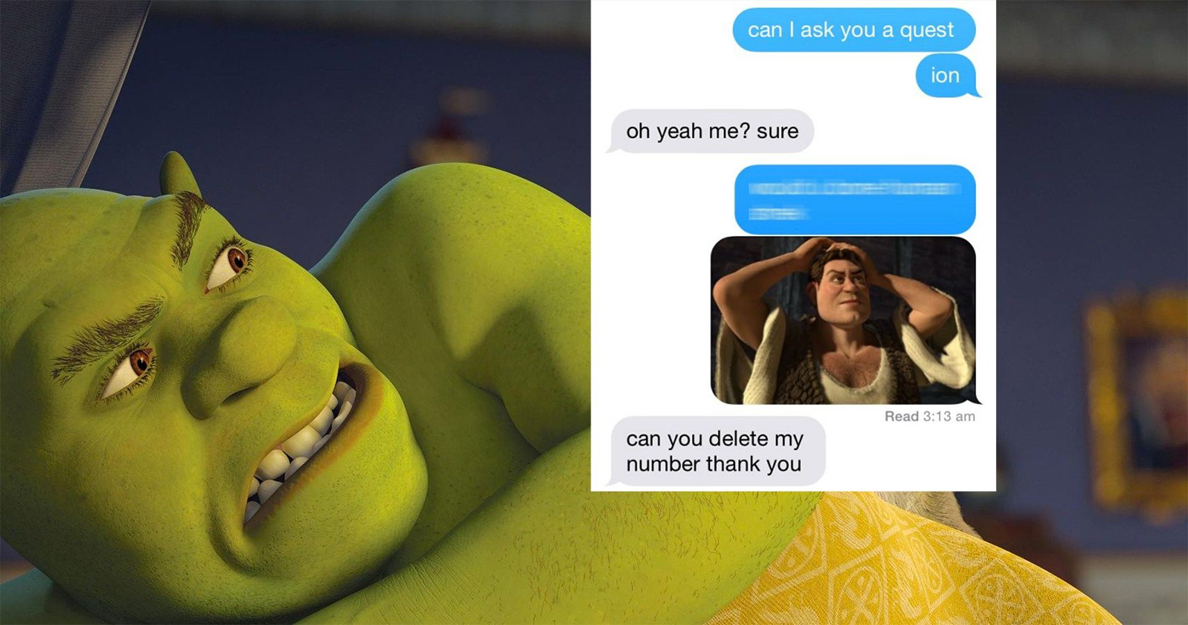 The Most Hilarious Shrek Memes The Internet Has Given Us