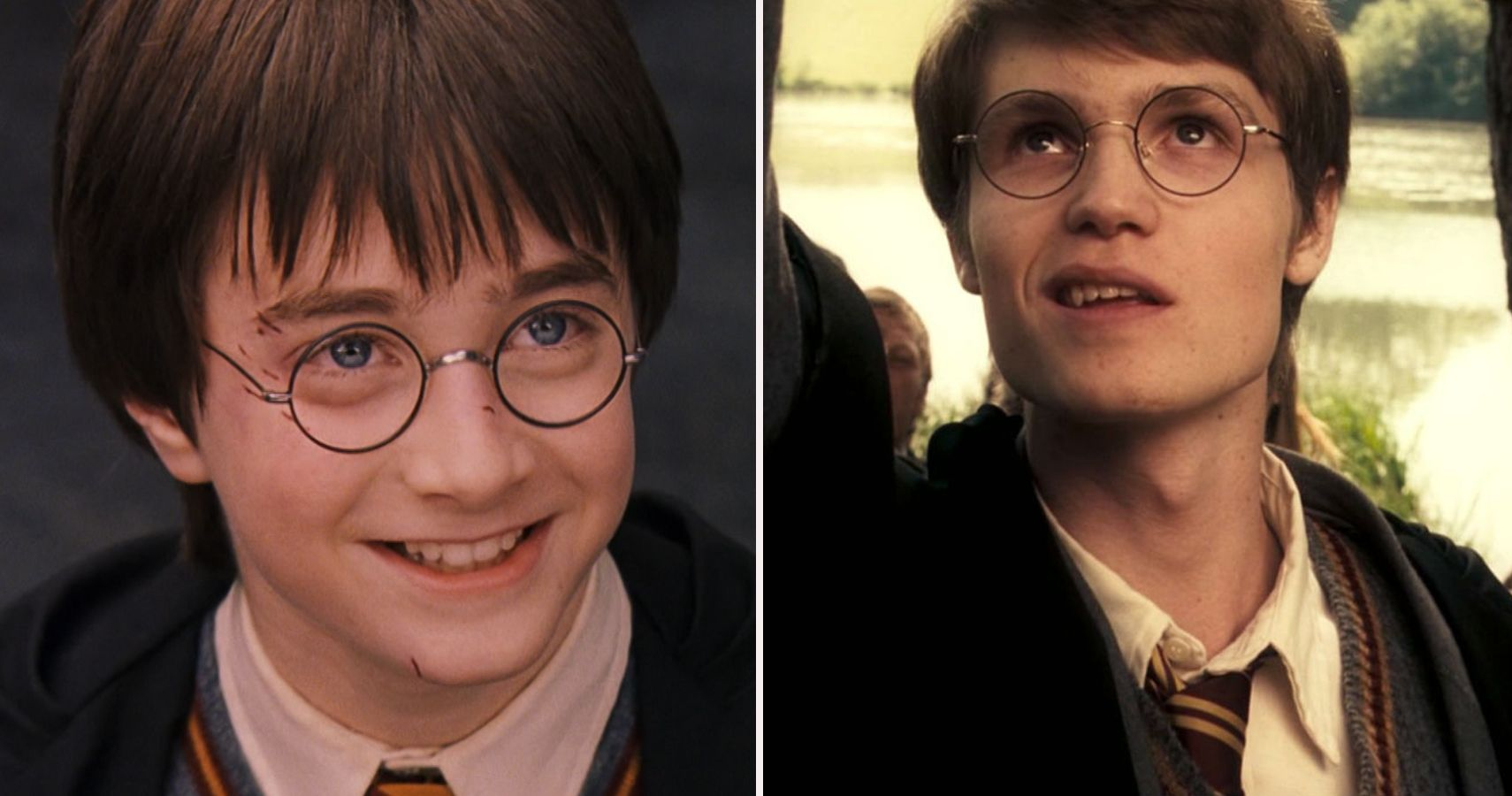 Harry Potter: 10 Facts About the Potters Left Out Of The Movies