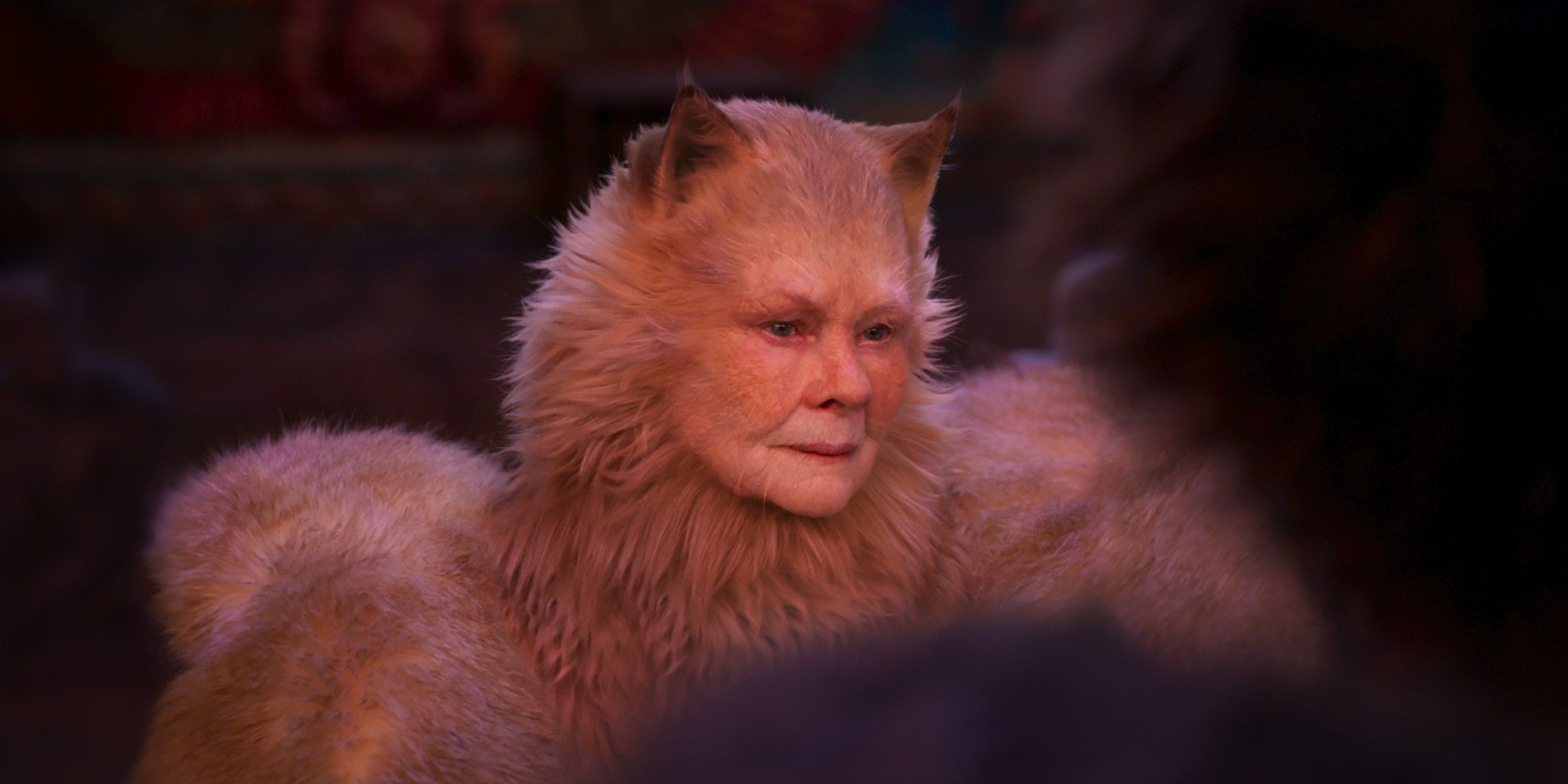 Cats 5 Reasons We\u0027re Excited For The Movie Musical (\u0026 5 Why
