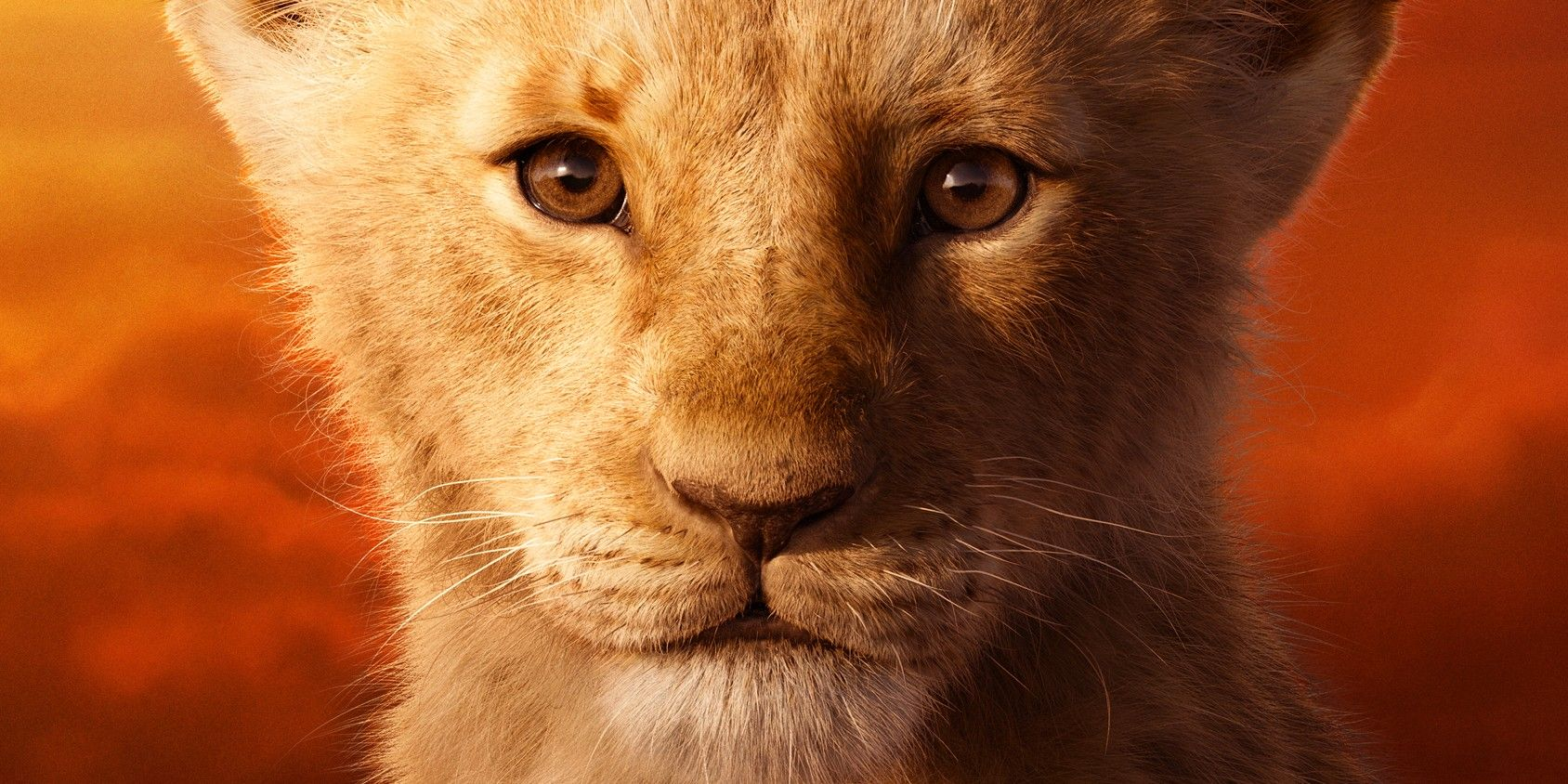 the lion king  2019  early reviews are here