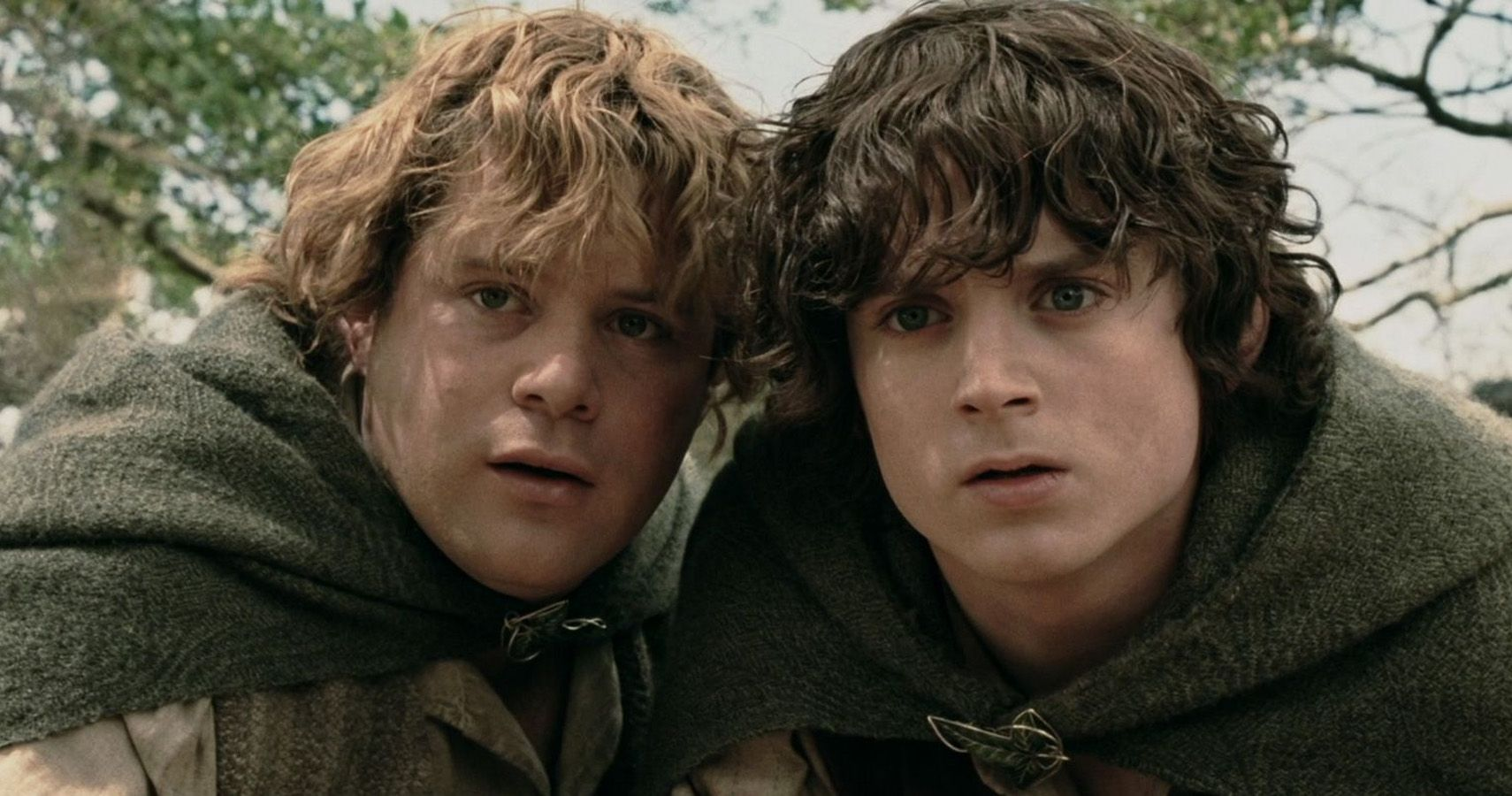 Lord Of The Rings 10 Reasons Sam And Frodo Aren T Real Friends