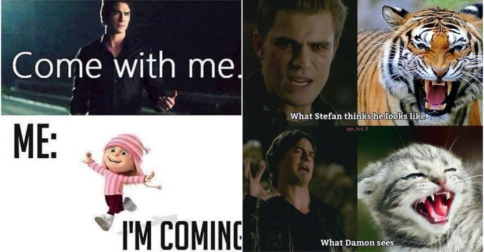 The Vampire Diaries 10 Hilarious Damon Memes That Only True Fans Will Understand