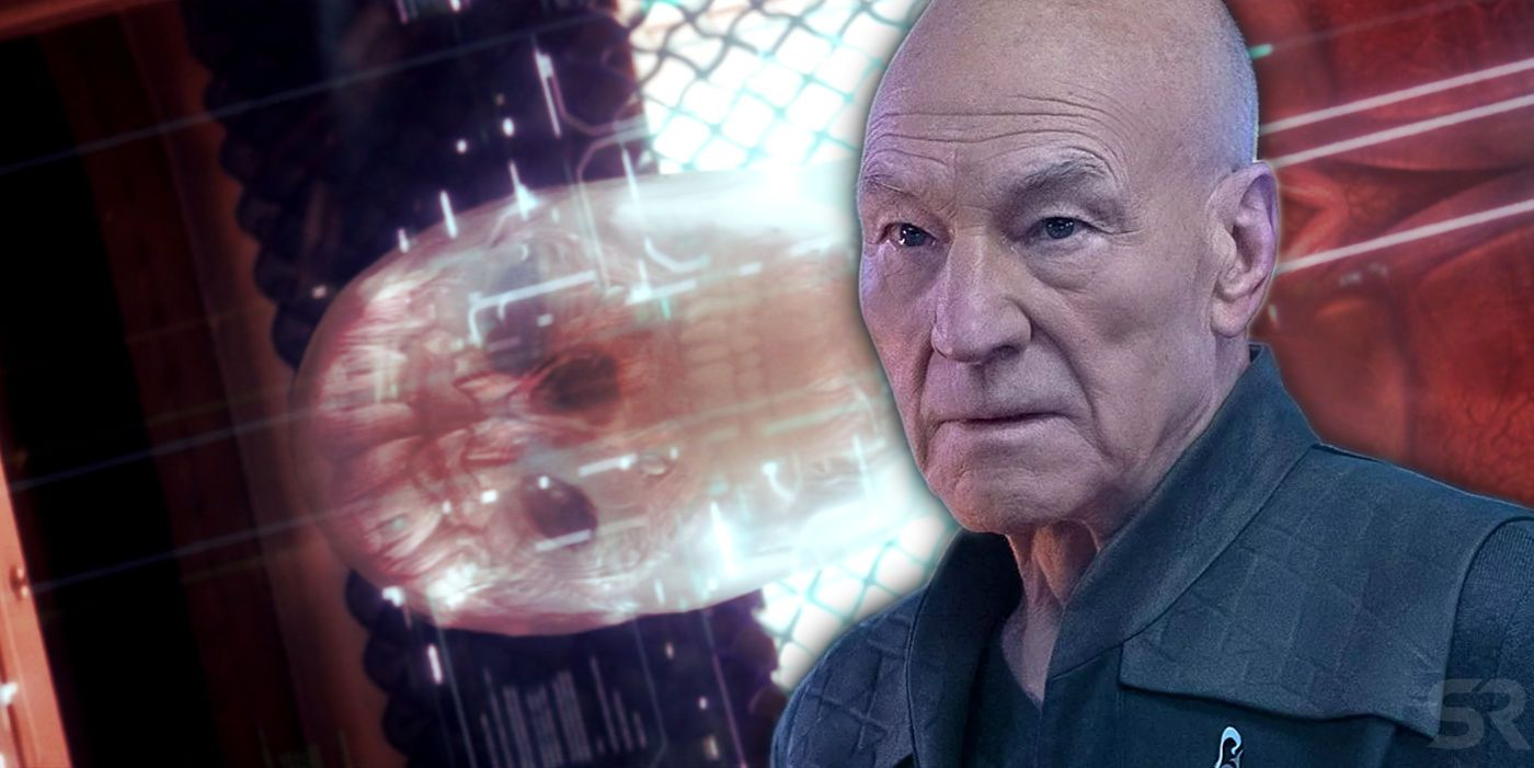 Star Trek: Picard Season 2 Explores Jean-Luc's Response To Android Body