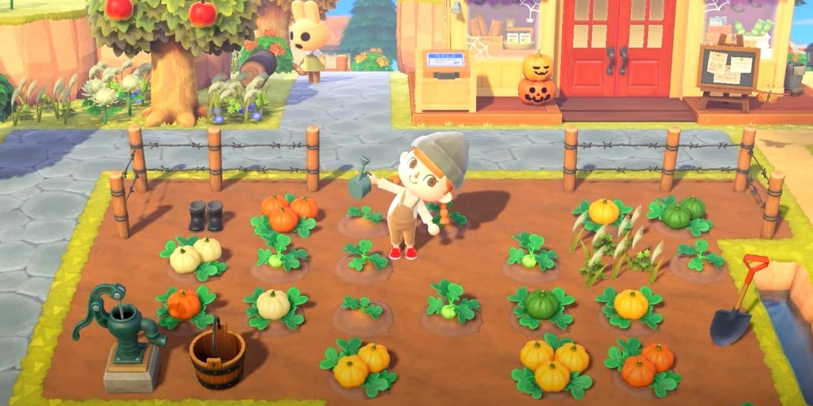 Why Animal Crossing's Pumpkin Farming Update Is So Important