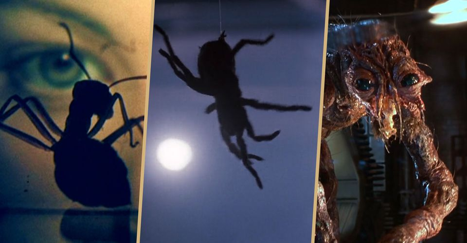The 10 Scariest Horror Films Featuring Spiders Insects