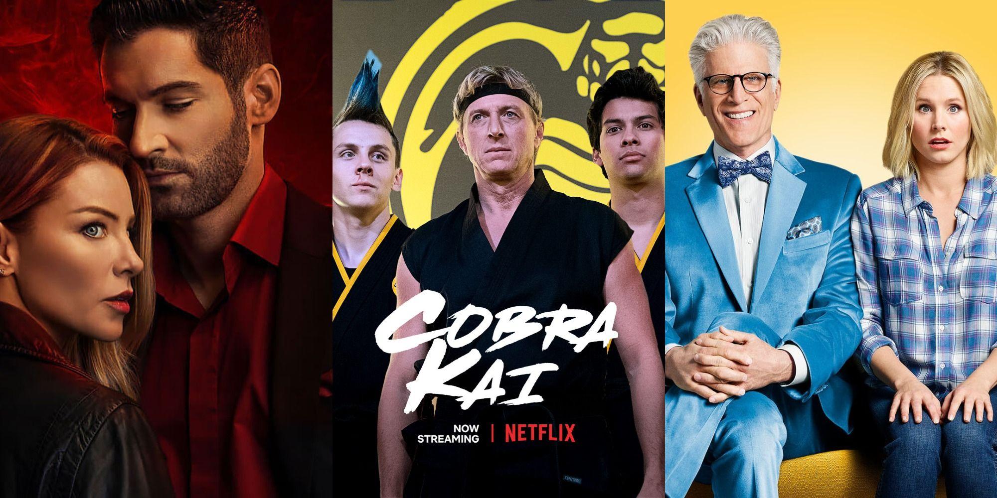 Cobra Kai & 20 Other Popular TV Shows On Netflix That Aren't ...
