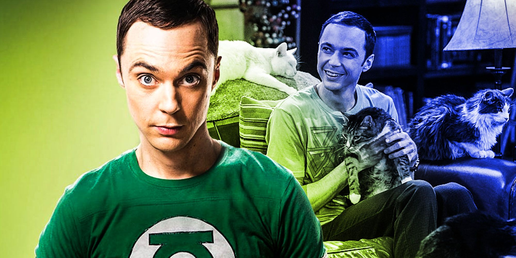 The Big Bang Theory Retcon Cured Sheldon's Cat Allergy